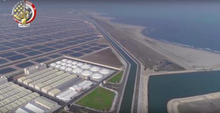 2017-11-24 Ghalioun Giant Fish Farm - Kafr El Sheikh - Egypt 2017 YouTube