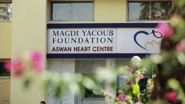 2018-02-03 Aswan Heart Centre