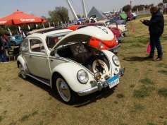 2019-04-03 Egypt Cairo Classic Cars and Vehicles Meetup - VW Beetle MSN